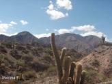 Parque Nacional Los Cardones, Salta